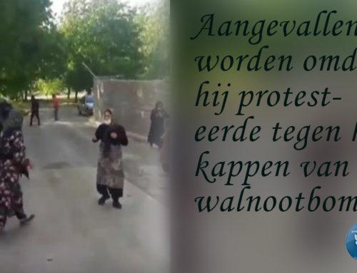 protesteren voor walnootbomen